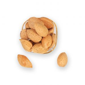 almond-shell-fns
